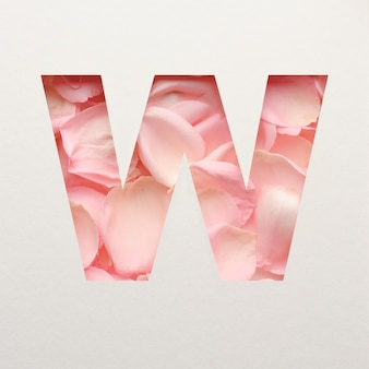 Projekt czcionki, abstrakcyjna czcionka alfabetu z różowymi płatkami róż, realistyczna typografia kwiatów - w.