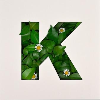 Projekt czcionki, czcionka abstrakcyjna alfabetu z liśćmi i kwiatem, realistyczna typografia liści - k.