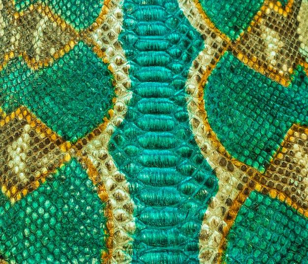 Projekt tekstury skóry węża zielony i żółty
