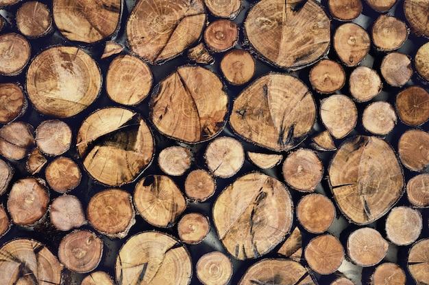 Projekty wnętrz z drewnianą ścianą, drewnianą ścianą w stonowanym kolorze.