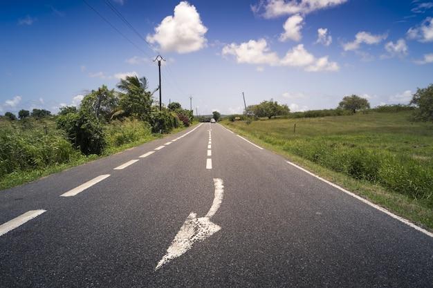 Prosta asfaltowa droga otoczona zielenią na gwadelupie, karaiby, francja