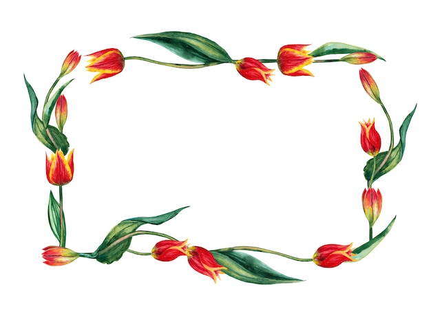 Prostokątna rama realistycznych czerwonych tulipanów na łodygach z liśćmi. akwarela ilustracja