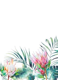 Prostokątna rama tropikalna. botaniczny projekt karty z kwiatowymi elementami i liśćmi na białym tle. szablon pozdrowienia lub ślubu z egzotycznych kwiatów protea, liści bananowca i palmy.