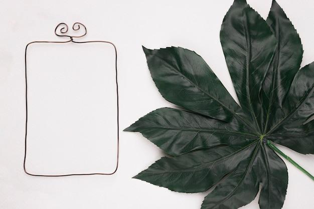Prostokątna rama w pobliżu zielonego dużego liścia na białym tle