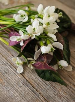 Przebiśniegi z pierwszych wiosennych kwiatów