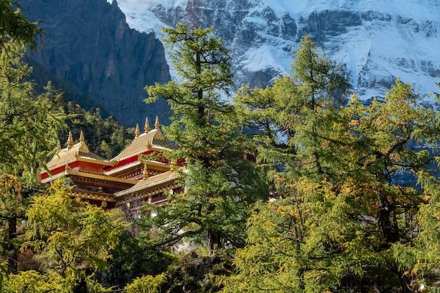 Przegląd świątyni chong gu na wzgórzu jesienią w rezerwacie przyrody yading