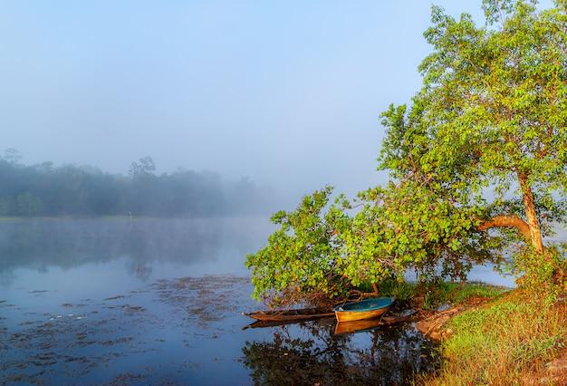 Przegląda wodnego rzecznego drzewa w mgle, rzece i łodzi rybackiej w mgły wiejskiej wsi