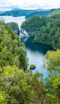 Przejście między jungle rocks, mangrove w pobliżu warikaf homestay, kabui bay. gam island, west papuan, raja ampat, indonezja