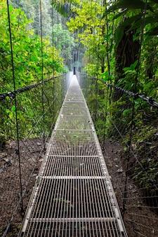 Przekazanie mostu w zielonej dżungli, kostaryka, ameryka środkowa