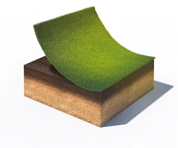 Przekrój gruntu z częścią trawnika