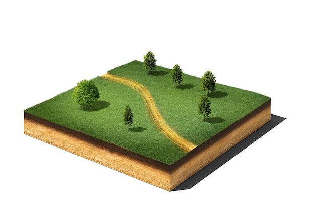 Przekrój ziemi z trawą, drzewami i chodnikiem