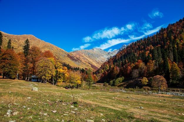 Przełęcz pyv w abchazji. wspaniały jesienny krajobraz. łąki alpejskie. auadhara.