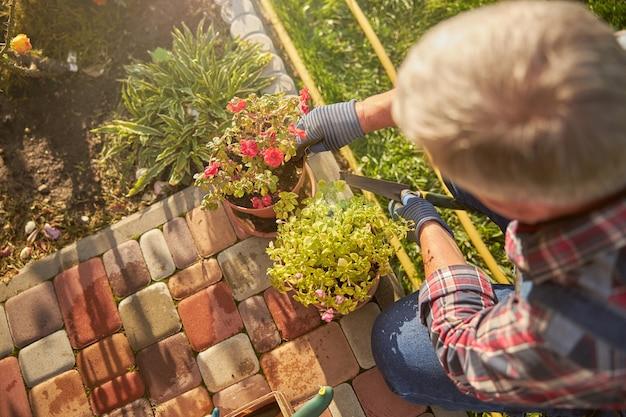 Przemyślana kwiaciarnia przyczajona przy doniczkach z kwiatami na chodniku w swoim ogrodzie