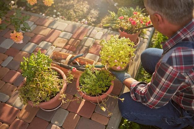 Przemyślany senior, który sezonowo pielęgnuje rośliny doniczkowe, wymieniając glebę w doniczkach