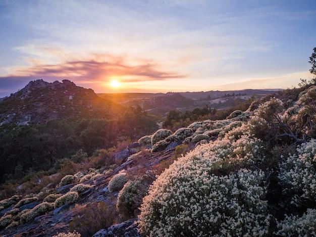 Przepiękna sceneria zapierającego dech w piersiach zachodu słońca w parku przyrody montesinho w portugalii