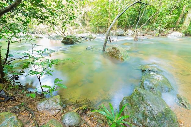 Przepływ wody w lesie