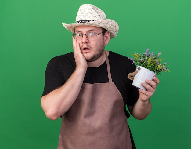 Przestraszony młody ogrodnik mężczyzna w kapeluszu ogrodnictwo trzyma kwiat w doniczce kładąc dłoń na policzku na białym tle na zielonej ścianie