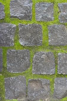 Przestrzeń, tekstura, kamień vintage kwadratowe kamienie z jasnozielonymi omszałymi szwami