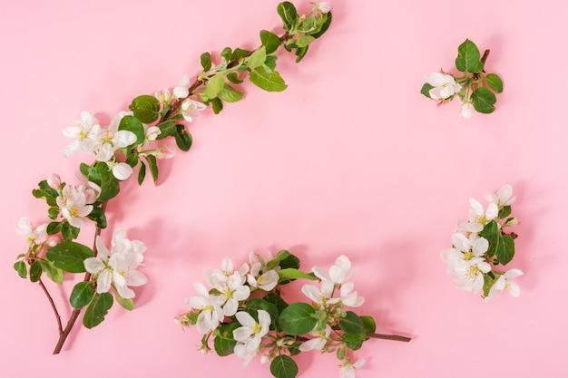 Przetargu wiosna jabłko kwiaty układ kompozycji tła. kwitnące gałęzie jabłoni na różowym tle z miejsca kopiowania.
