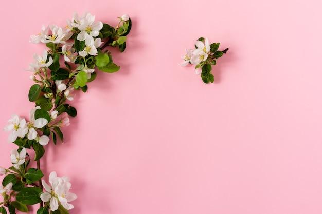 Przetargu Wiosna Jabłko Kwiaty Układ Kompozycji Tła. Kwitnące Gałęzie Jabłoni Na Różowym Tle Z Miejsca Kopiowania. Premium Zdjęcia