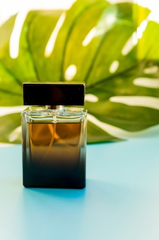 Przezroczysta butelka na perfumy i zielony liść. szklana butelka na perfumy z rośliną tropikalną monstera.