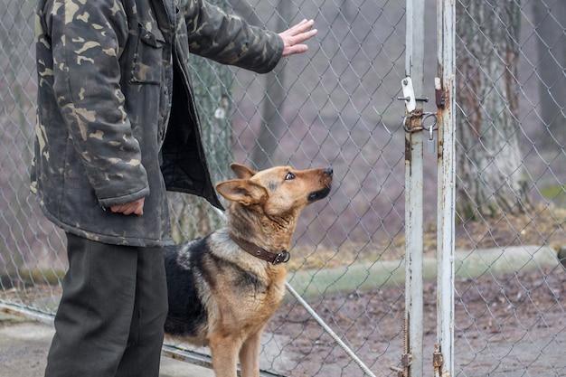 Przy bramie stoją mężczyzna i pies, pilnują obiektu