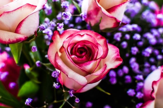 Przyciemniana karta z bukietem róż w promieniach słońca. róże z bliska, małe kwiaty gipsówki