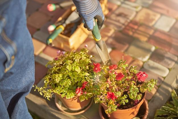 Przycięte zdjęcie małej kielni używanej do ogrodnictwa i sadzenia