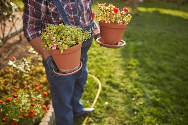 Przycięte zdjęcie ogrodnika stojącego w ogrodzie trzymającego dwie doniczki