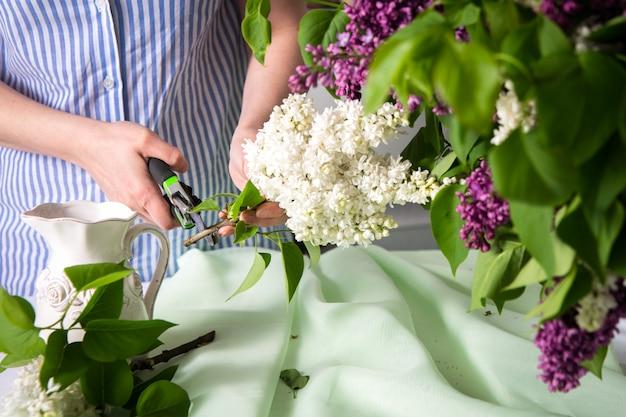 Przygotowanie, cięcie kwiatów bzu w wazonie