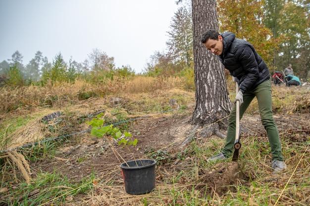 Przygotowanie dziur w lesie do sadzenia młodych drzew