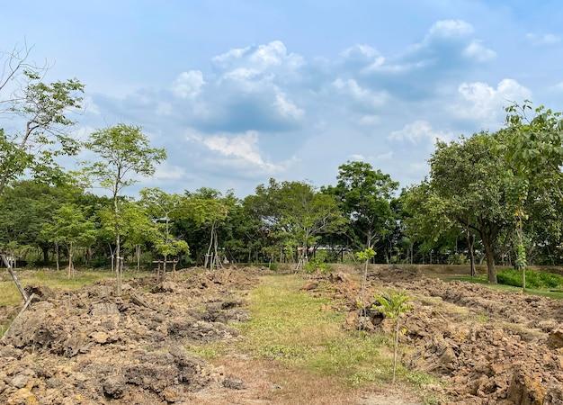 Przygotowanie farmy ziemi rolniczej w parku na świeżym powietrzu.
