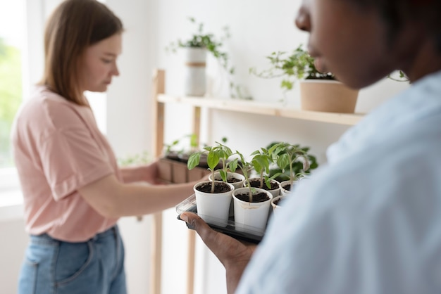 Przyjaciele mający zrównoważony ogród w domu