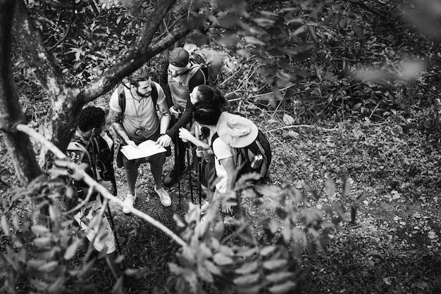 Przyjaciele trekking razem w lesie