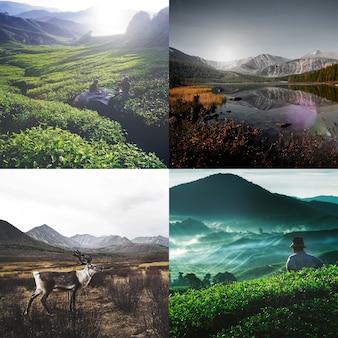 Przyroda ekologia wakacje wakacje serenity concept