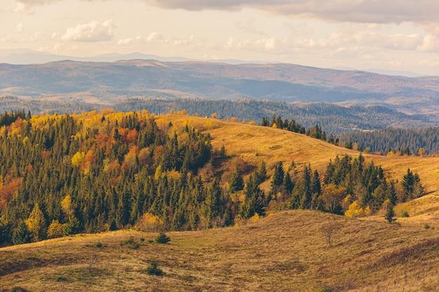 Przyroda jesienią las i góry