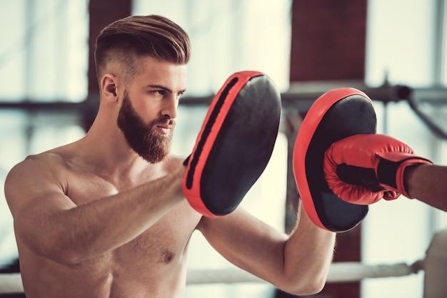 Przystojny brodaty bokser