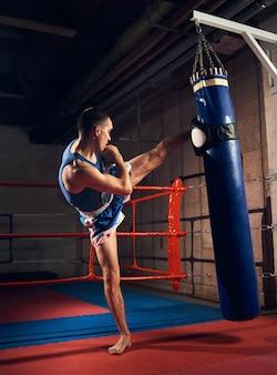 Przystojny kopnięcie boksera trenuje kopanie i wbijanie bokserskiej torby