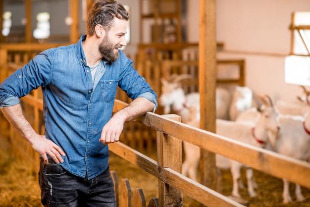 Przystojny rolnik w niebieskiej koszulce nadzorujący kozy w stodole. produkcja i hodowla mleka naturalnego