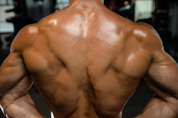 Przystojny wzorcowy młody człowiek trenuje z powrotem w gym