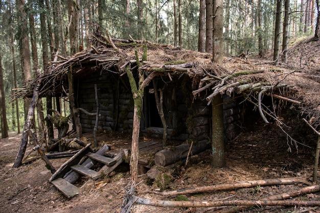 Przytulna drewniana rudera z mchu i gałęzi w lesie