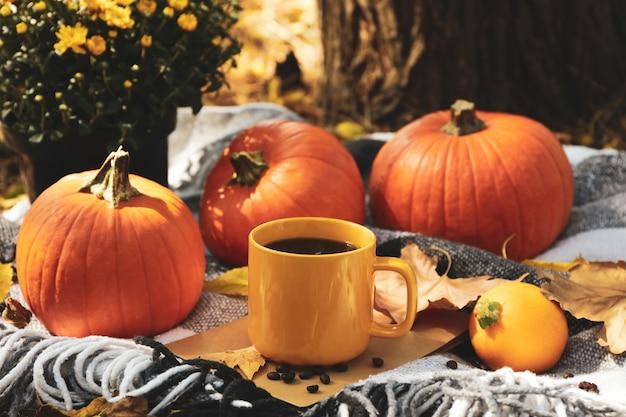 Przytulna jesień koncepcja z dyniami i filiżanką kawy na świeżym powietrzu