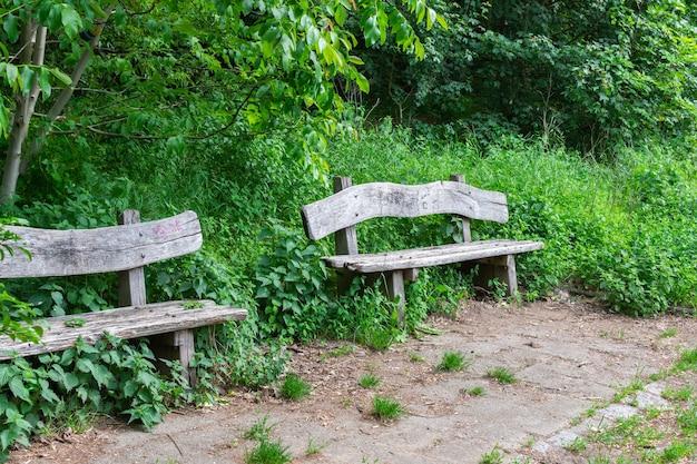 Przytulne ścieżki w parku volkspark prenzlauer berg, stare drewniane ławki