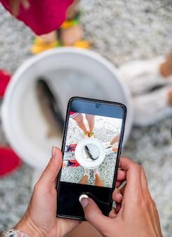 Pstrąg pływający w wiadrze, filmujący telefon przez dziewczynę phone