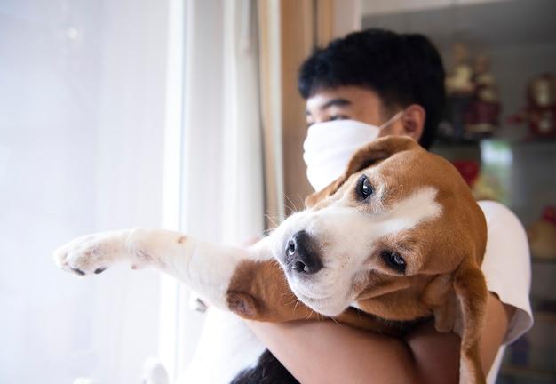 Psy rasy beagle i ich właściciele spędzają cały dzień na zabawie w domu