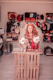 Psy w ubraniach. rudowłosa kędzierzawa kobieta uśmiecha się do swoich uroczych białych psów w ubraniach