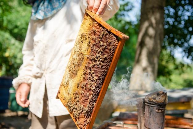 Pszczelarz otwiera ul, pszczoły kontrolują, bada miód. pszczelarz badający plaster miodu.