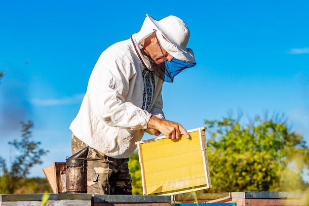 Pszczelarz pracuje przy pszczołach i ulach na pasiece. pszczoły na plastrze miodu. ramy ula. pszczelarstwo. kochanie.