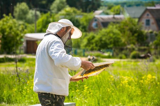 Pszczelarz pracuje z pszczołami i ulami na pasiece. pszczelarstwo. miód.