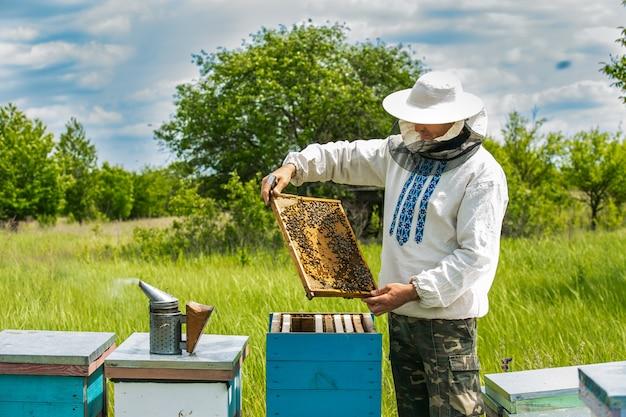 Pszczelarz pracuje z pszczołami i ulami na pasiece. ramki ula pszczół